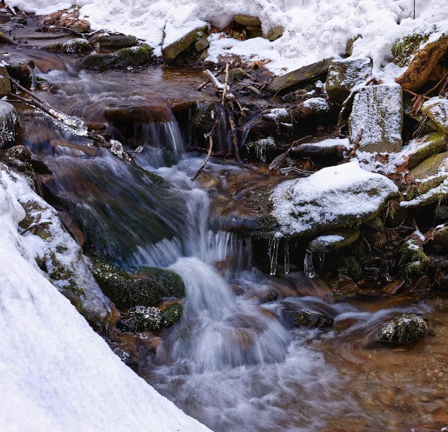Cascades on stream by Michaela Firešová - Nature Up Close Water ( water, winter, cascades, long exposure )