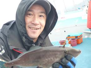 Photo: ウマズラキャッチ! 餌はイカです。