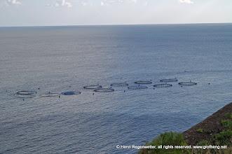 Photo: Fischzüchterei im Meer