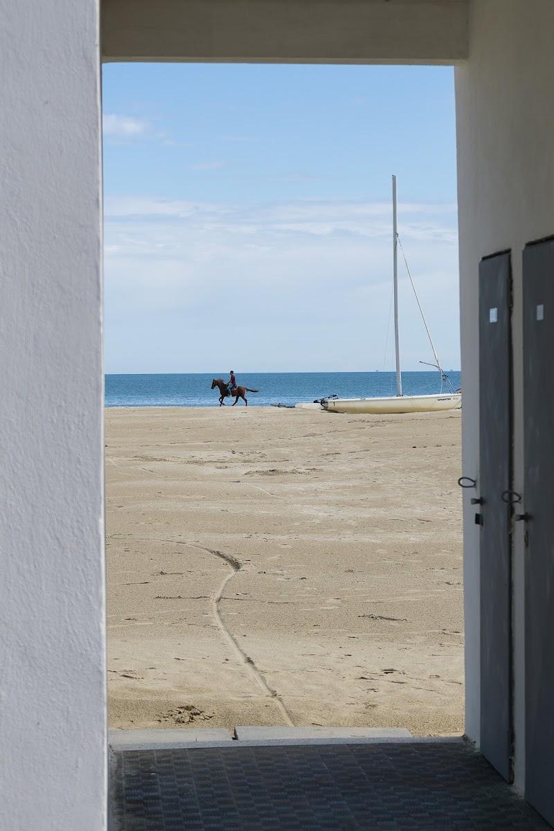 Il mare d'inverno di Patri61