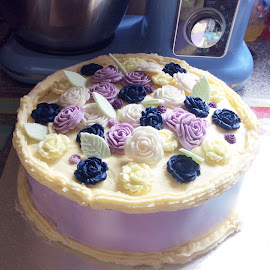 Birthday Cake  by Janet Skoyles - Food & Drink Cooking & Baking (  )