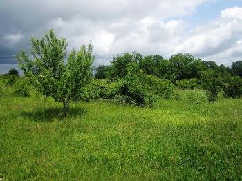 terrain à Cahuzac (47)