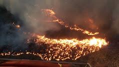 Imagen del incendio durante la pasada noche en una imagen difundida por el Infoca.