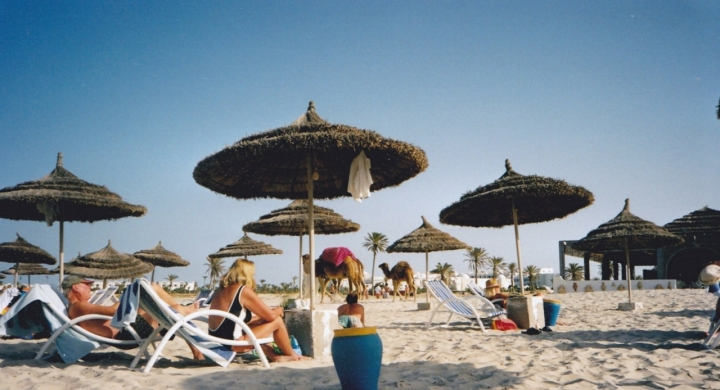 In spiaggia con i cammelli di lady oscar