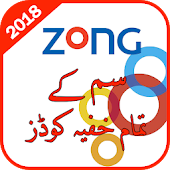 Secret Codes of Zong