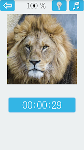 Jigsaw Puzzle VIP: Lion - náhled