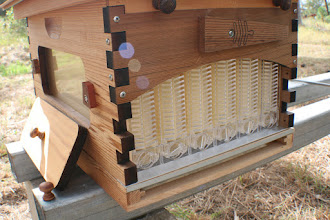Photo: Flow hive honey extraction beekeeping review MahakoBees