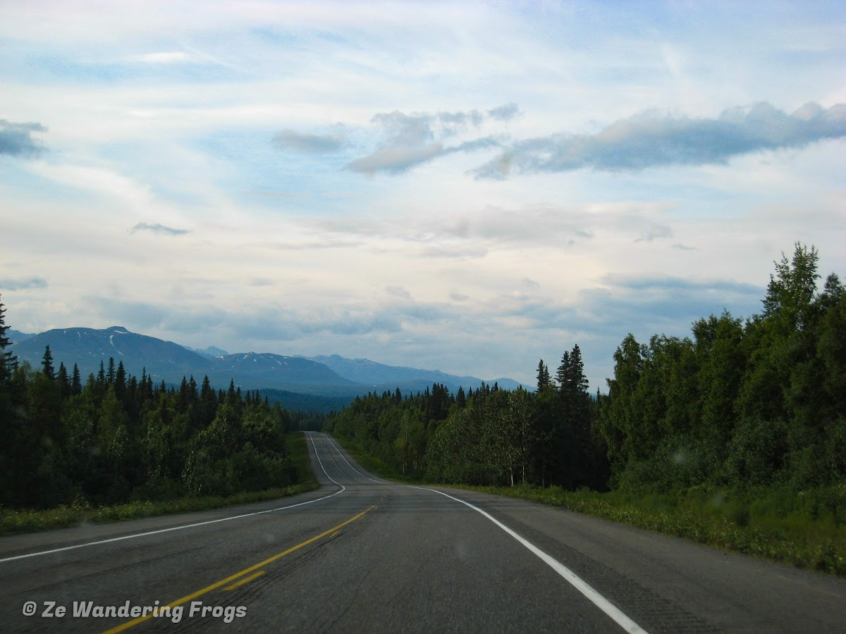 USA Alaska Itinerary 7 Days // Road Trip from Anchorage to Denali National Park