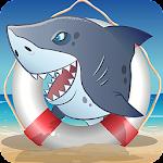 Hit the Shark
