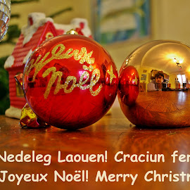 Merry Christmas! by Ciprian Apetrei - Typography Captioned Photos ( christmas )