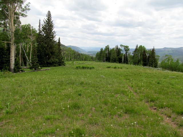 Southwest ridge of Seeley Mountain