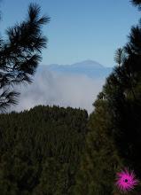 Photo: Teide a la vista