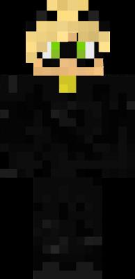 Noir chatte espion