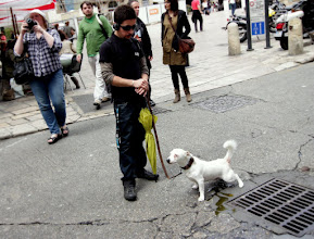 Photo: А вот и собачка из Бордо.