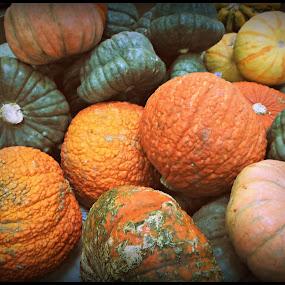 Fall Pumpkins by Regina Watkins - Nature Up Close Gardens & Produce ( orange, pumpkins, fall, contest, october, Thanksgiving Challenge, circle, pwc79, , color, colorful, nature )