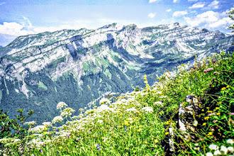 Photo: T-30-19 von sixt Wanderpfad zum chalet de hotel buet - Alpensommerblumen Tourenliste: http://pagewizz.com/liste-wanderungen-und-ausfluege-in-hochsavoyen-frankreich/