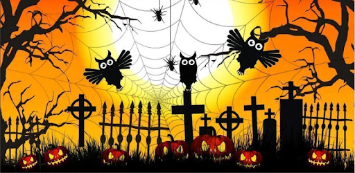 Halloween Owls live wallpaper