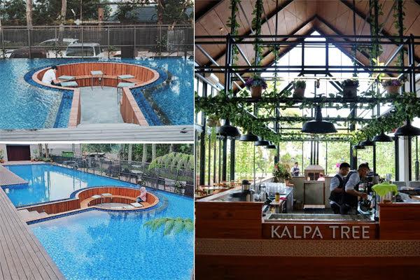 Kalpa Tree Cafe