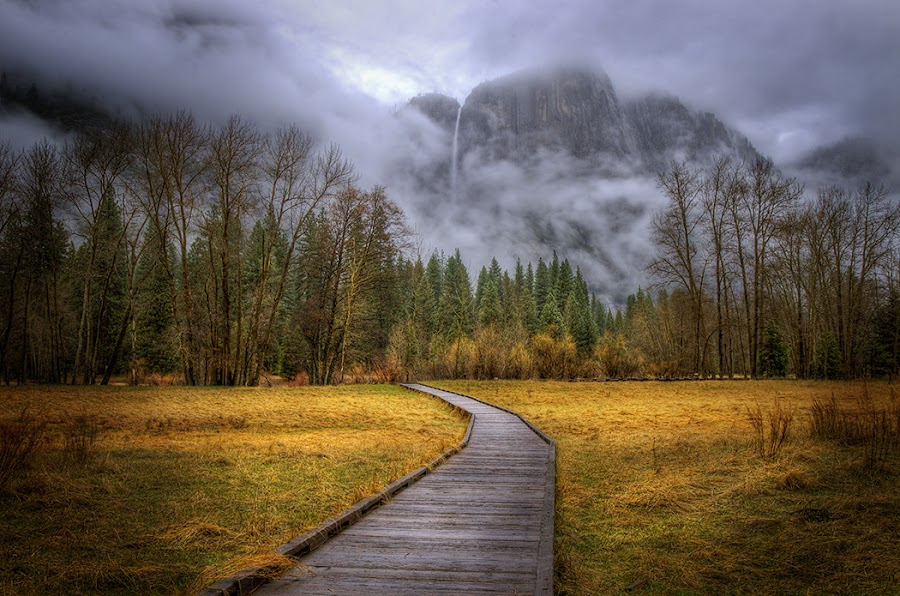 Path to Yosemite Falls by Randall Harrison - Landscapes Forests ( clouds, grasses, fog, yosemite, waterfall,  )