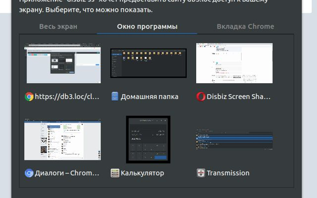 Disbiz Screen Share
