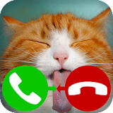fake call cat 2 game Apk Download Free for PC, smart TV
