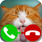 fake call cat 2