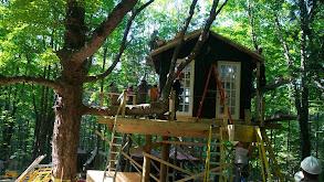 Treehouse Cabin thumbnail