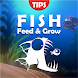 Fish Feed and Grow Tips