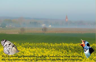 Photo: schöne Landschaften in Europa