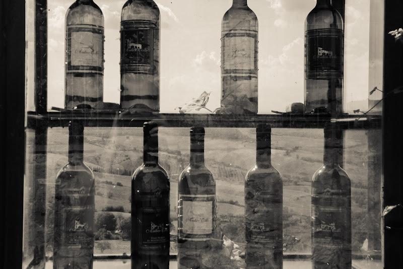 Io, il vino e il mondo di pam