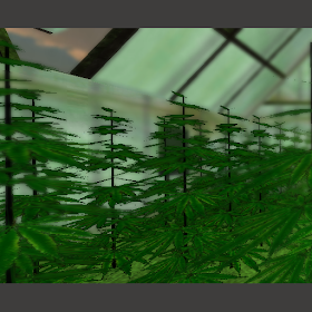Weed 3D Live Wallpaper
