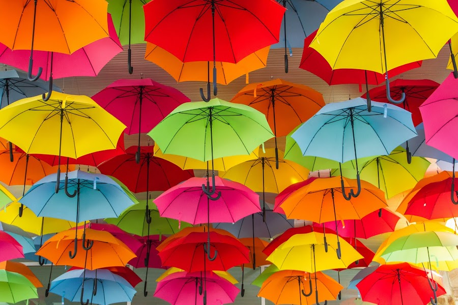 Brollies in full bloom by Tony Burnard - Abstract Patterns ( colour, colourful, vivid, umbrella, brollies )