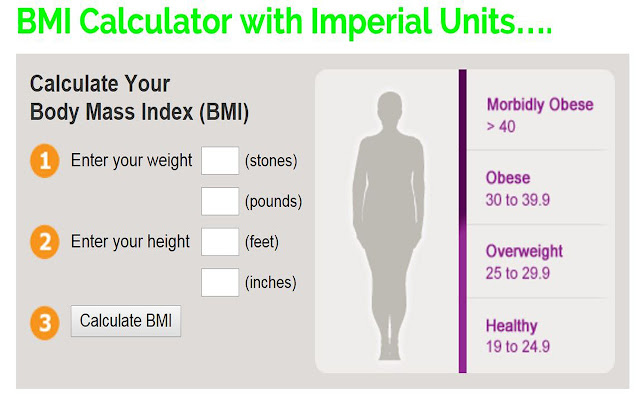 Body Mass Index (*BMI*) Calculator