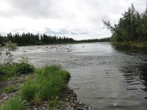 Photo: Устье притока Лаптопая, вышли из гор, (примерно 20км прошли), можно сплавляться, не выскакивая то и дело на перекатах и разбоях.