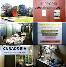 Photo: Detalhes do CEPEC: placa do herbário, sala principal, sala de tipos, sala de material de campo.