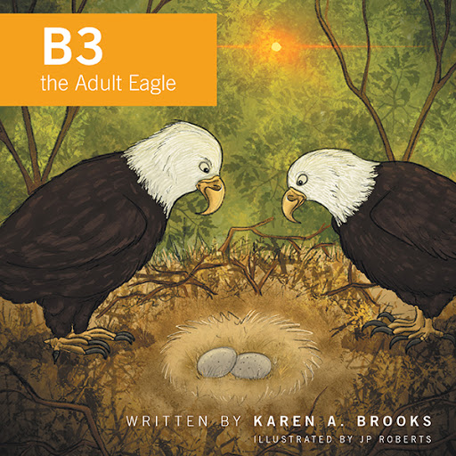 B3 the Adult Eagle cover