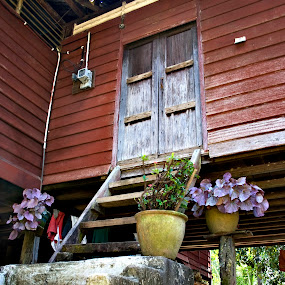Door step of Home by Beng Lim - Buildings & Architecture Homes ( home, wooden, kampong, door step, asia, door, traditional, house, country side )