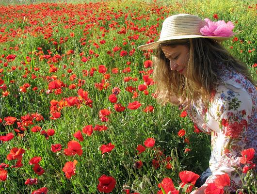 April Flowers di Elisabetta Di Girolamo