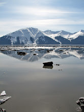 Photo: Turnagain (detail)