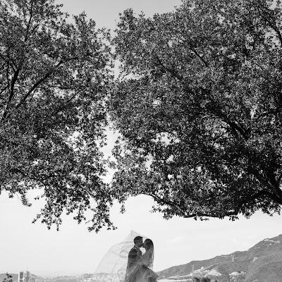 Wedding photographer Mino Mora (minomora). Photo of 01.01.1970