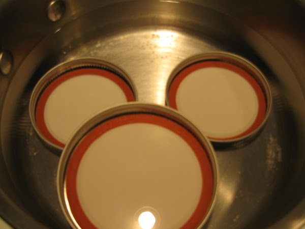 In another pan, place jar rings and lids in hot water and bring to...
