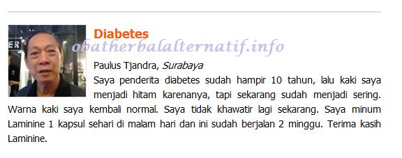 Pengobatan Alternatif Herbal Penyakit Diabetes