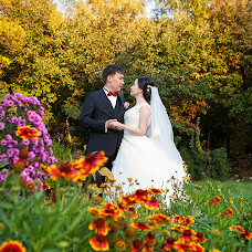 Wedding photographer Larisa Akimova (LarissaAkimova). Photo of 28.10.2016