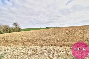 terrain à Nicey-sur-Aire (55)