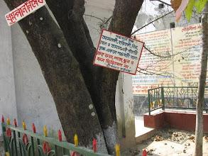 "Photo: The famous ""Panchabati"" (5 holy plants grown closely in an enclosed area - Amlaki, Haritaki, Neem, Bel and Tamal) planted by Prabhusundar Himself!"