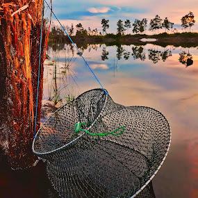 Spot fishing by Oengkas Wijaya - Instagram & Mobile Android ( landscape photography, sunrise, forest, lake, landscape )