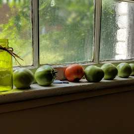Summer Deliverance by Sandy Watson Morrison - Food & Drink Fruits & Vegetables