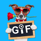 Hi5GIF - Animated Cards Quotes