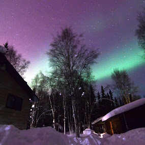 Home At Last by Rebecca Weatherford - City,  Street & Park  Night ( sky, stars, alaska, northern lights, aurora borealis, aurora, path, night, nikon )