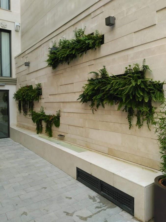 Foto del estado actual de jardín vertical en Granada